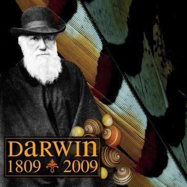 marisa coppiano darwin