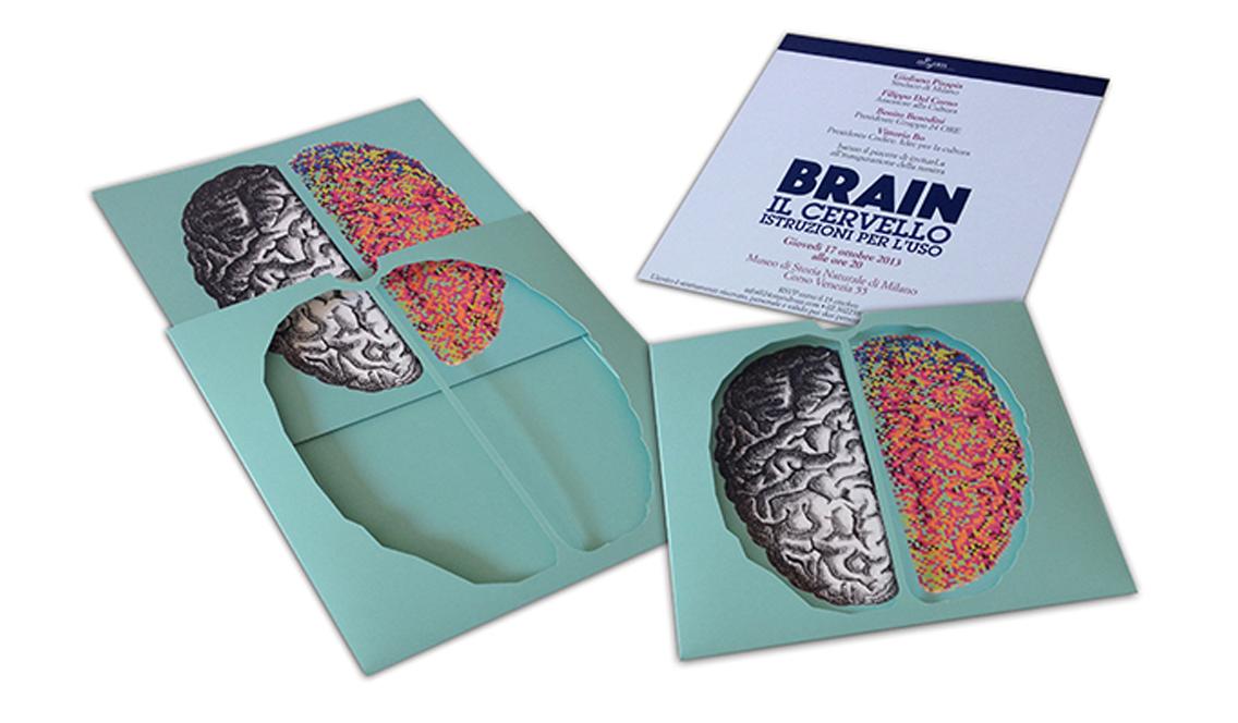 marisa coppiano brain