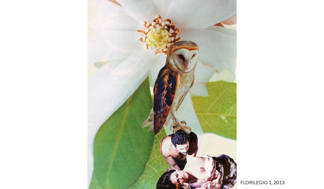 marisa coppiano collage florilegio